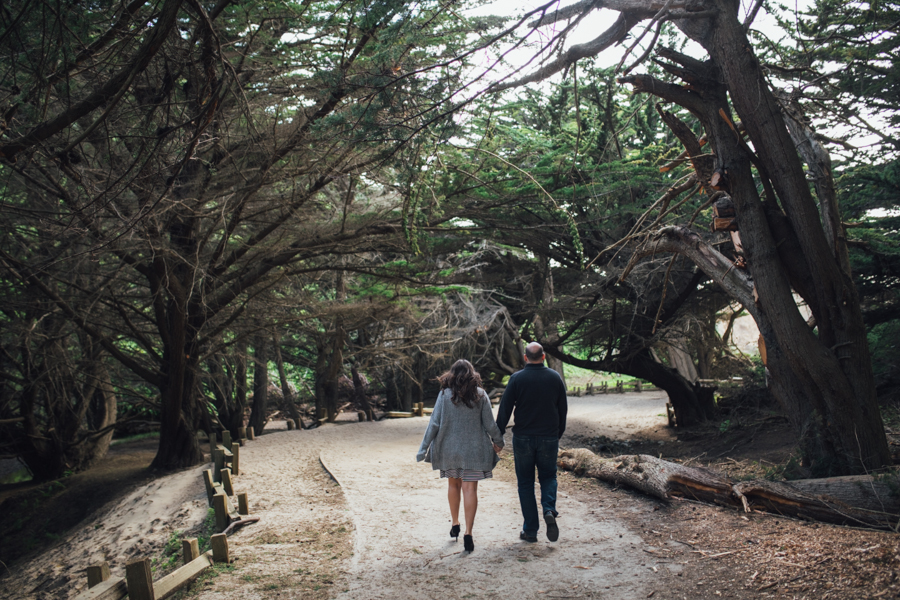 big-sur-engagement-photography (24)