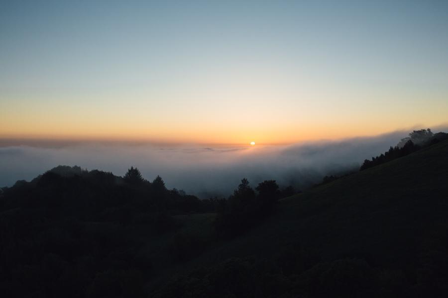 santa-cruz-mountain-engagement-photography (19)