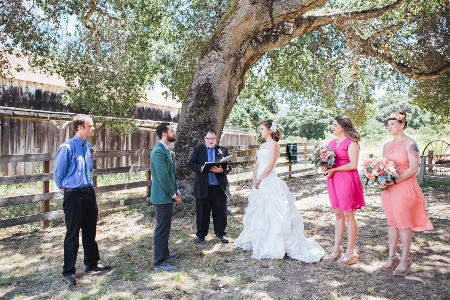 Wedding Photography Carmel