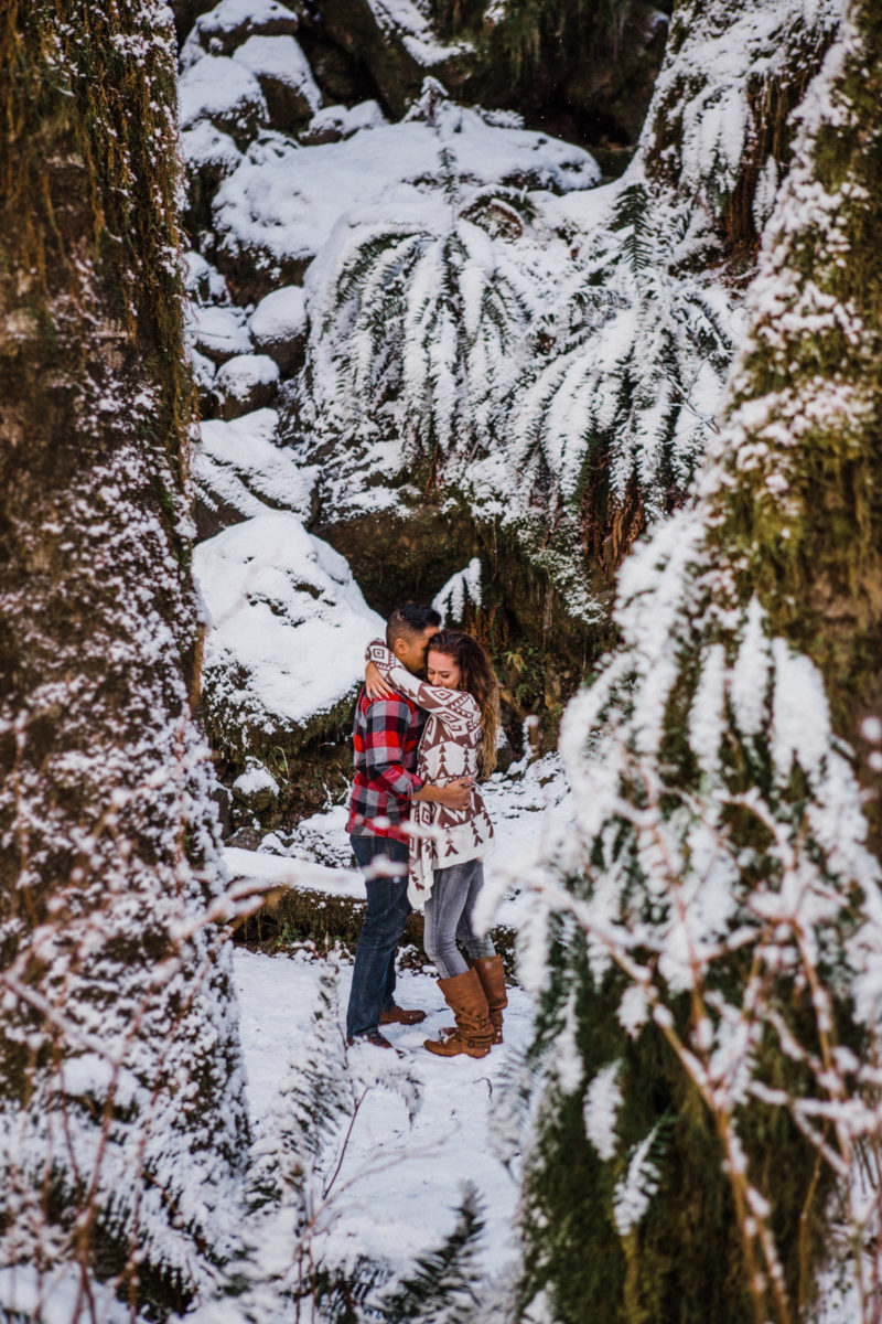 olympic national park engagement