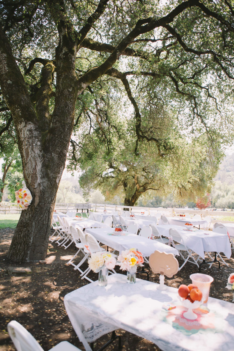 santa-cruz-wedding-venues